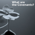 what-are-the-covenants