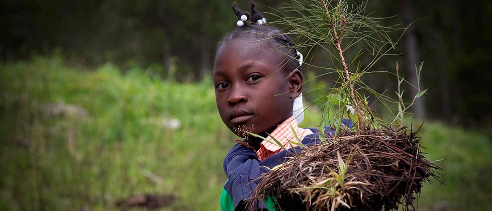 ¿De qué trata el Decenio Internacional para los Afrodescendientes?